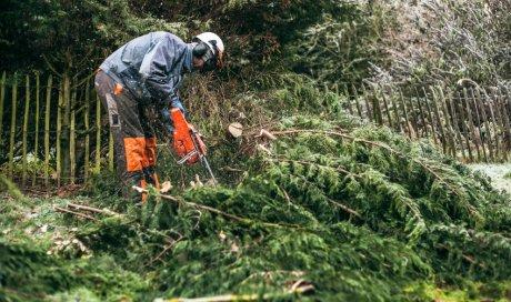 Élagage d'arbres en milieu difficile à Montmélian