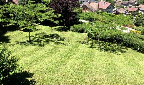 Entretien de jardin Arbin